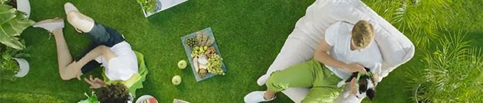 Greenery «Color of the Year 2017» de Pantone